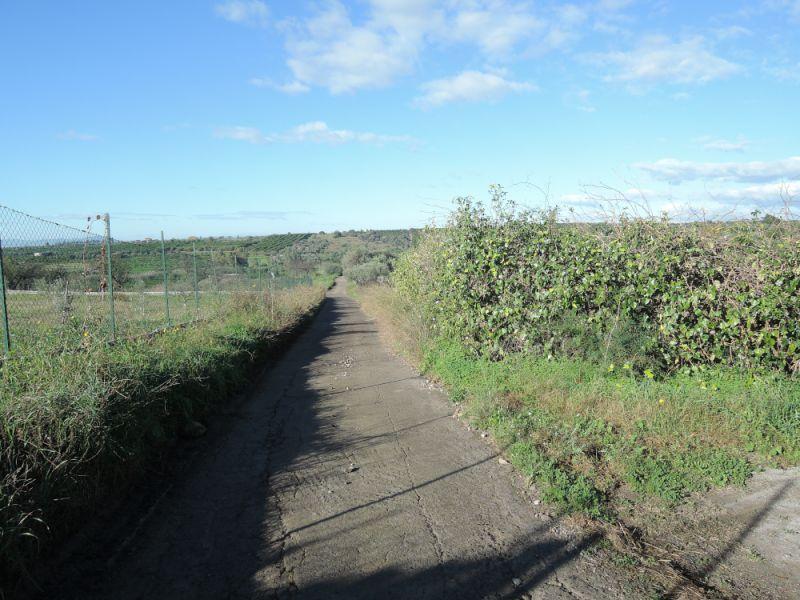 Terreno Agricolo Uliveto Agrumeto
